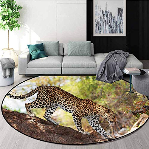 Fantastic Prices! RUGSMAT Zoo Non-Slip Area Rug Pad Round,Leopard Tree Nature Reserve Bedroom Home S...