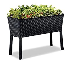 The Ultimate Garden & Outdoor Living Gift Guide