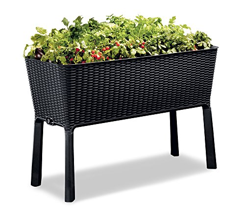 Keter Easy 31.7 Gallon Raised Garden Bed with Self Watering Planter Box and Drainage Plug-Perfect for Growing Fresh Vegetables, Flowers and Herbs, Graphite