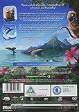 Immagine 1 snail and the whale edizione