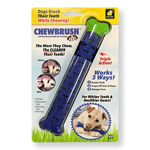 BulbHead Chewbrush Dog Toothbrush Chew Toy, Great Dog Teeth Cleaning Toy