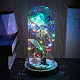 Beferr Beauty and The Beast Rose Enchanted Colorful Foil Flower with LED Light in Glass Dome for Valentine Mother's Day Birthday Christmas Best Gifts for Girlfriend Wife (Lover)