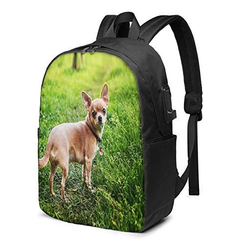 Laptop Rucksack Business Rucksack für 17 Zoll Laptop, Entzückender glatthaariger Chihuahua Hund Schulrucksack Mit USB Port für Arbeit Wandern Reisen Camping, für Herren Damen