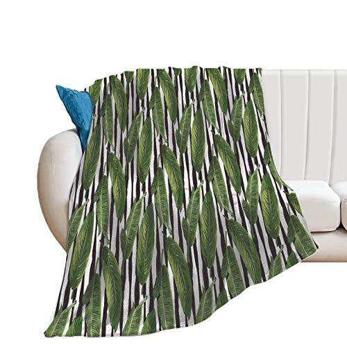 Manta de forro polar, 152.4 x 203.2 cm, hojas de plátano tropical de la selva en parches minimalistas tropicales contemporáneos, manta de helecho suave de microfibra