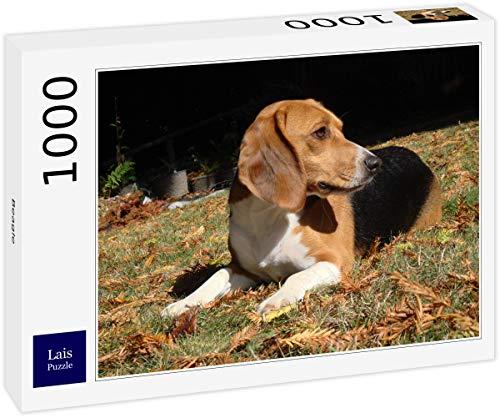 Puzzle Beagle 1000 Piezas