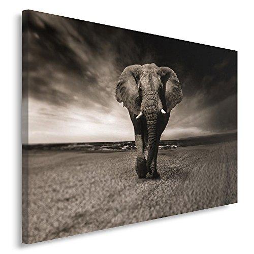 Feeby. Cuadro en lienzo - 1 Parte - 80x120 cm, Imagen impresión Pintura decoración Cuadros de una pieza, ELEFANTE, NATURALEZA, NEGRO