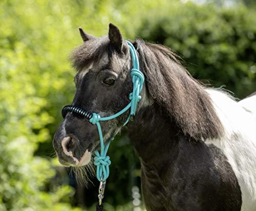 USG Knotenhalfter, türkis, shetty/pony