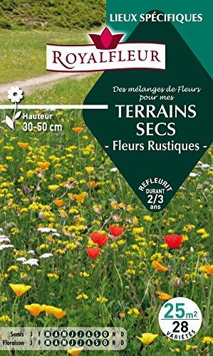 Royalfleur PFRF08684 Graines de des Mélange de Fleurs mes Terrains Secs 25 m²