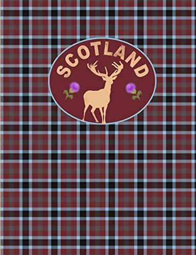 Scotland: Tartan Plaid 2019 Diary/Planner [Idioma Inglés]