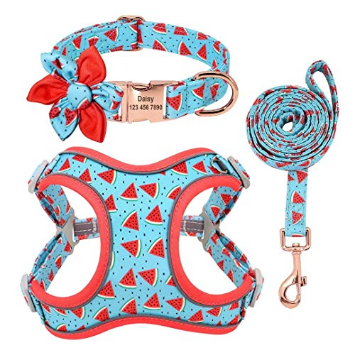 PET ARTIST Personalized Girl Dog Collar with Detachable Flower - Soft Mesh Step-in Reflective Dog Vest Harness for Small Medium Dogs - 3 in 1 Adjustable Basic Dog Collars & Harness and Leash Set