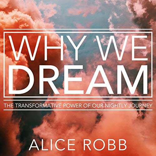 Why We Dream audiobook cover art