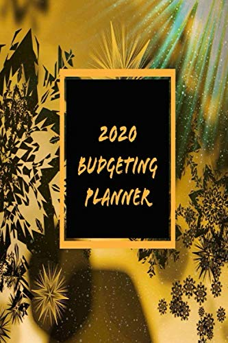 Budgeting Planner 2020: 020 Daily Weekly...
