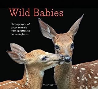 Wild Babies: Photographs of Baby Animals from Giraffes to Hummingbirds