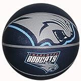 Spalding NBA Courtside Team Outdoor Gummi Basketball, Charlotte Bobcats