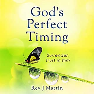 God's Perfect Timing audiobook cover art