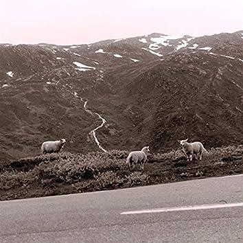 Plateau / Peak / Valley