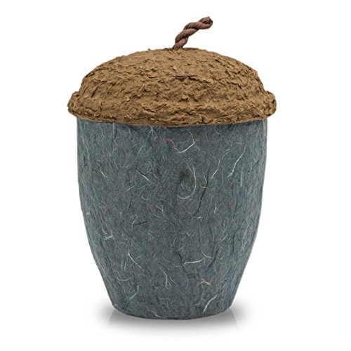 OneWorld Memorials Acorn Paper Biodegradable Cremation Urn - Large - Holds Up to 200 Cubic Inches of Ashes - Grey Biodegradable Cremation Urn