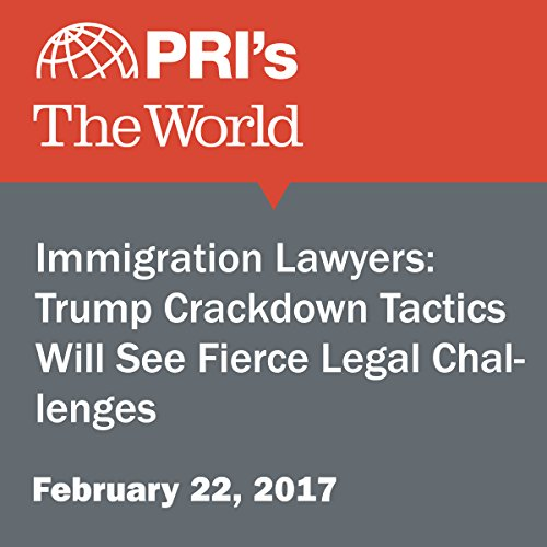 Immigration Lawyers: Trump Crackdown Tactics Will See Fierce Legal Challenges audiobook cover art
