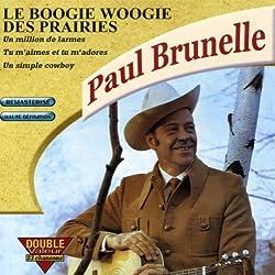 Le Boogie Woogie Des Prairies