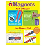 Trend Enterprises Inc. Magnets Learning Chart, 17' x 22'
