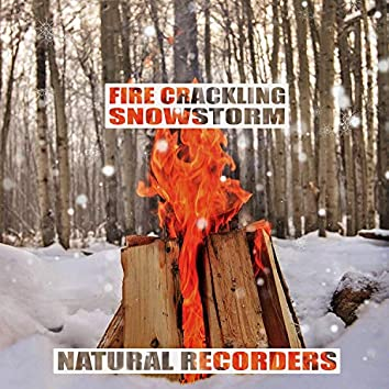 Fire Crackling & Snowstorm