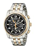 Citizen Men's AT9016-56H 'World Time A-T' Stainless Steel Two-Tone Eco-Drive Watch