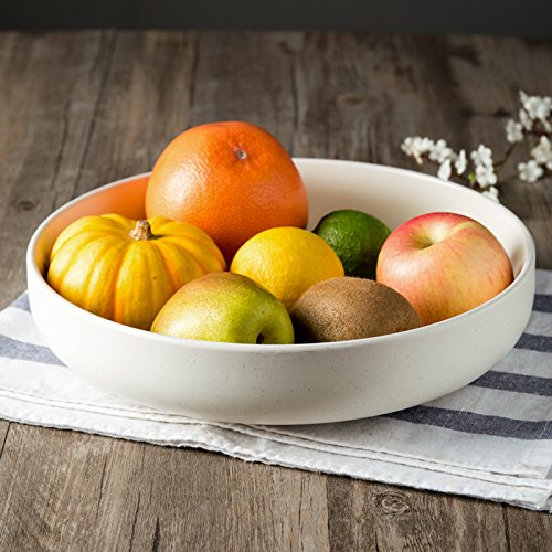 CLG-FLY Large ceramic bowl noodle bowl large bowl bowl Fresh Fruit Salad home,The great white soup 10 inches