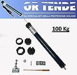 ORTENDE - Motore per Tapparelle Avvolgibili o Tende da Sole, 50Nm, 100 kg, Completo di Staffe ed Adattatori