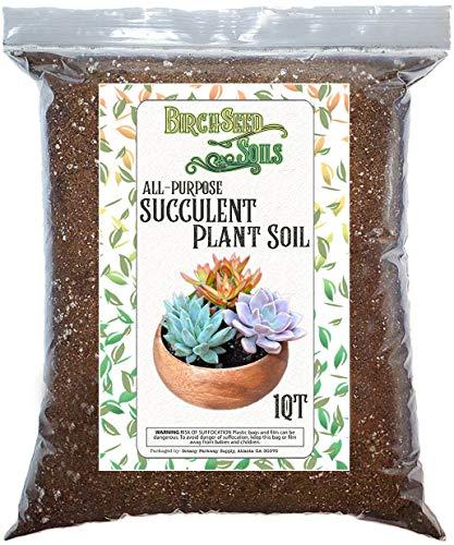 Succulent Plant Soil, Natural All-Purpose Cactus, Aloe Vera, and Succulent Potting Soil, 1 Quart Sized Bag, Premium Fast Draining Mix