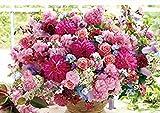 DIY pintura diamante Flores rosas en la mesa Kit de Pintura de diamantes,cuadros de punto de cruz de diamantes diamante numero decoracion pared manualidad diamantes 30 x 40 cm
