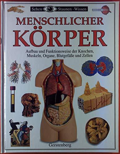 Menschlicher Körper. Aufbau und Funktionsweise der Knochen, Muskeln, Organe, Blutgefäße und Zellen.