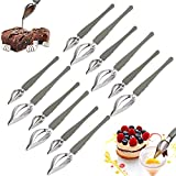 Veraing 12Pcs Chef Decoration Pencil Spoon Precision Culinary Drawing Spoon Cooking Painting Spoon Saucier Drizzle Spoons for Decorative Plates, Cake, Coffee, 2 Sizes