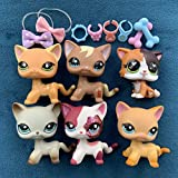 KK lps Shorthair 5pcs, lps Cats 391 339 2291 11701643 Yellow and Gray Cats with lps Accessories Lot