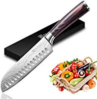 Chef Knife Ultra Sharp Kitchen Knives, Carving, Utility Knife with Ergonomic Handle, Quality German Stainless Steel