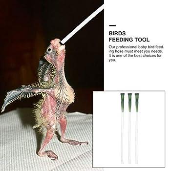 TEHAUX Lot de 3 tuyaux souples d'alimentation pour oiseaux - Facile à utiliser