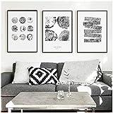 cuadros decoracion salon Anillos de árbol abstractos en blanco y negro nórdico pintura en lienzo cuadro de arte de pared para sala de estar cuadro de decoración morden 19.7x27.6in (50x70cm) x3pcs sin
