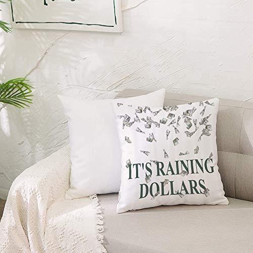 Fundas de cojín para con Cremallera Invisible PoliésterAlmohada Caso de,Divertido Está lloviendo dólares Estados Unidos Cien Diner,Dormitorio o Coche Decorativas Fundas Cojines 19 x 19inch 50 x 50cm
