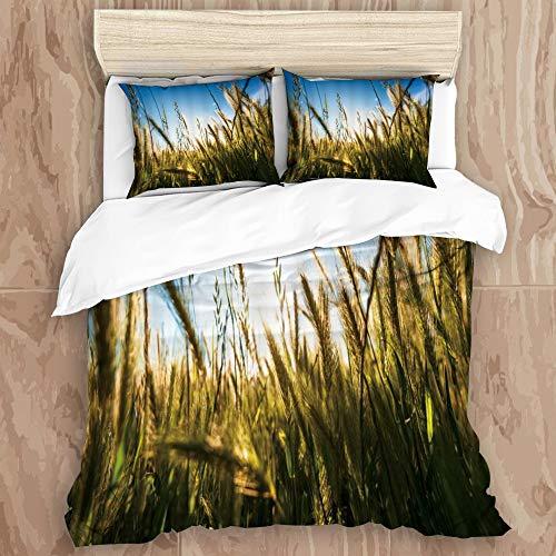 JHVL2 Duvet Cover Set,Rural Wheat Harvest Season Scene Swinging Wheat Field Enjoying Sunny,Decorative 3 Piece Bedding Set with 2 Pillow Shams, King Size