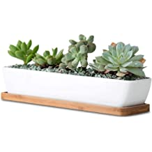 Plant not Include Mini Flower Cactus Pot Indoor Outdoor Home Garden Kitchen Decor Farielyn-X 2 Pack White Succulent Planter Pots 11.1 inch Long Rectangle Ceramic Plant Container with Bamboo Saucers