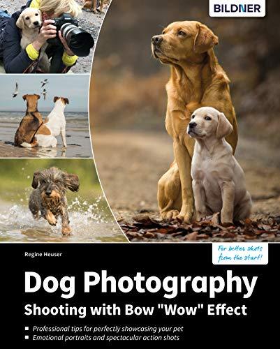 Hunde-Shooting - Fotografieren mit