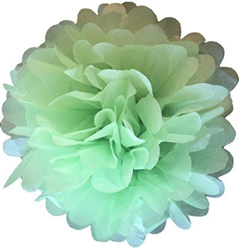 Matissa - Lot de 10 pompons en papier de soie de 15 cm pour décoration de fête ou de mariage - 20 coloris au choix, vert pastel