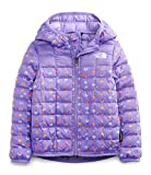 The North Face Toddler ThermoBall Eco Hoodie, Pop Purple Rainbows End Print, 4T