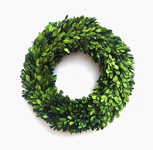 Mills Floral Boxwood Country Manor Round Wreath, 14-Inch