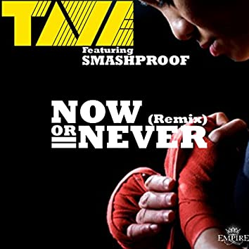 Now or Never (feat. Smashproof) [Remix]