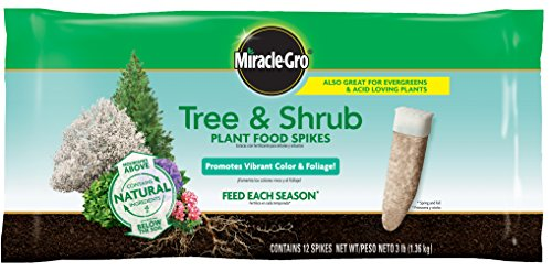 Miracle-Gro Tree & Shrub Plant Food Spikes, 12 Spikes/Pack