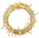 100-1000 LED Lichterkette Kette Leuchte auf Transparent Kabel für Weihnachten Baum Garten Hochzeit...