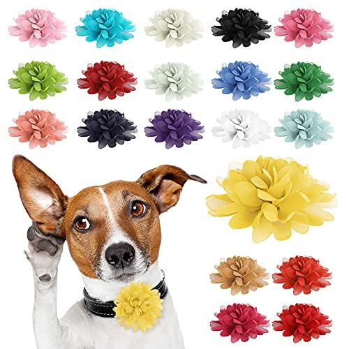 Molain Diameter 4 Inch 20 Pcs Dog Collar Flowers Set Adjustable Pet Large...
