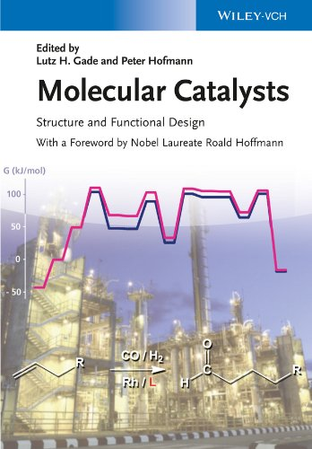 Molecular Catalysts: Structure and Functional Design (English Edition)