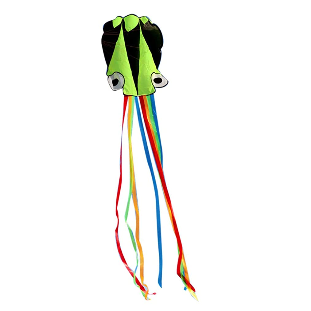 FILOL Kite-Large Octopus Long Tail Beach Kites Activity Game -Perfect for Beach or Park by (J)
