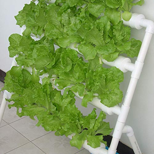 Hydroponic Grow Kit 36/108 Plant Sites 3 Layers Hydroponics Growing System...